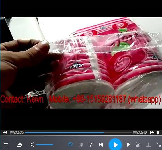 Toilet Paper Roll Packing Machine —One-head-10 PCS each Bag — 426A