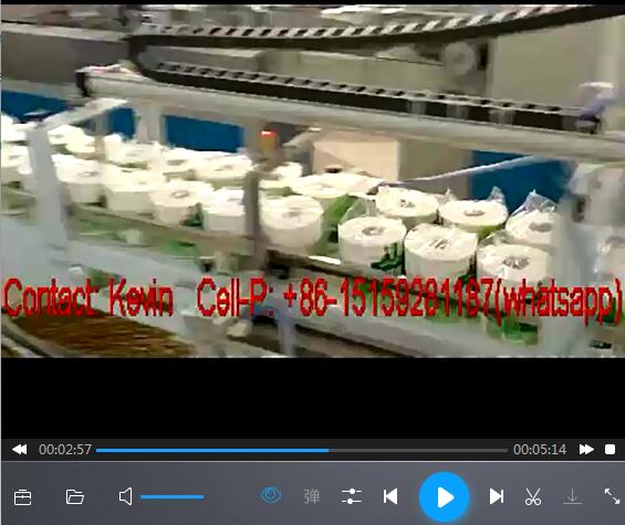 Toilet Paper Roll Converting Machine Line —10 PCS each Bag — 426A